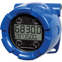 DO-30004-62 Explosion-Proof Rate/Totalizer with battery, backlight, and loop output.